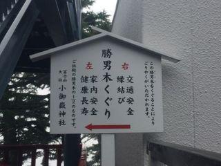 036_1.JPG