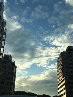 IMG_8060_1.JPG
