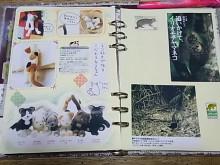 はなずきんの日記帳-WISHページ(猫)