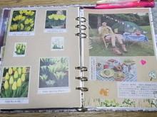 はなずきんの日記帳-WISHページ(メルヘンキャンプ)
