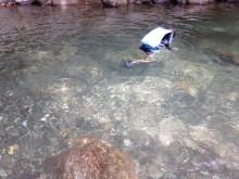 水中観察中の次男